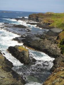 Phillip Island: coastline
